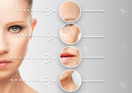 Phyt-Age  Rejuvenate Your Skin Anti-Aging Cream   Put your best face forward with renewed confidence!